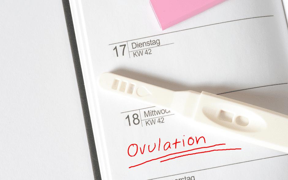 schwanger werden Hilfsmittel Ovulationstest